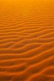 W Namib pustyni czerwony piasek Obraz Stock