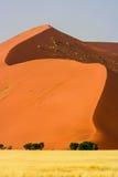W Namib pustyni piasek czerwona diuna Obraz Royalty Free