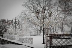 W śniegu zima park Zdjęcia Royalty Free