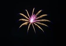 W nocnym niebie kolorowi fajerwerki Zdjęcia Stock