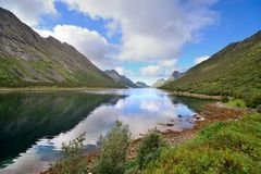 W Norwegia Fjord brzeg Fotografia Stock