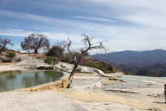 W Oaxaca stan Hierve agua el, Mexico Zdjęcia Royalty Free