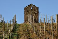 Włochy agricolture kamienia buda 1 Zdjęcia Royalty Free