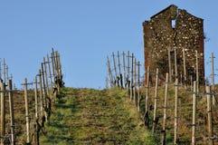 Włochy agricolture kamienia buda 2 Zdjęcia Royalty Free