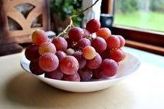 Włochy czerwony winogrono Fotografia Royalty Free