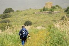W?ochy Tuscany Maremma Castiglione della Pescaia Grosseto, naturalna rezerwa Diaccia Botrona zdjęcie royalty free