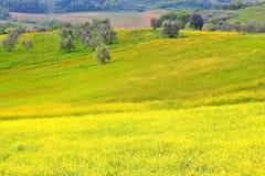Włochy Umbria wiejskiego krajobrazu Zdjęcie Stock