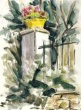 W ogródzie Obrazy Royalty Free