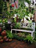W ogródzie Fotografia Royalty Free