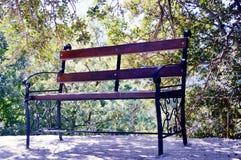 W ogródzie ławka Obrazy Stock