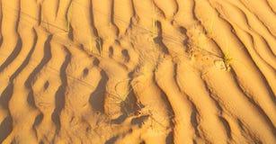 w Oman stara pustynia l i pusta kwartalna abstrakcjonistyczna tekstura Zdjęcie Royalty Free
