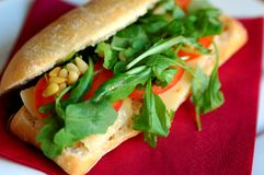 włoska kanapka Zdjęcie Royalty Free