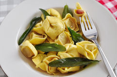 Włoski Tortellini Zdjęcia Stock