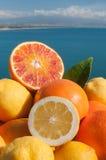 włoskie owoców Fotografia Royalty Free