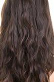 włosy Zdjęcie Royalty Free