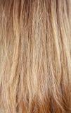 włosy Zdjęcie Stock