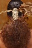 Włosy w etnicznym stylu Zdjęcia Royalty Free