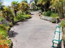 Włoszczyzny Windsor ogród Penarth w lecie Obrazy Royalty Free