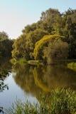W parkowym pokrovskoe-Streshnevo staw Zdjęcie Royalty Free