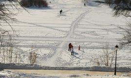 W parkowym Tsaritsyno zima dzień Zdjęcia Royalty Free