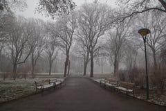 W parku 01 Zdjęcia Royalty Free