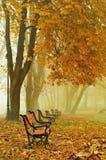 W parku czerwone ławki Zdjęcie Stock