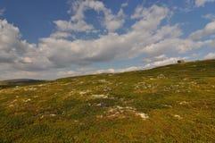 W parku narodowym Hardangervidda, Norwegia Zdjęcie Stock