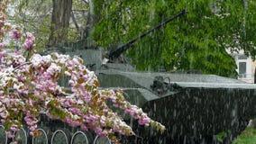 W parku obok zabytku zbiornik ja ` s snowing zdjęcie wideo