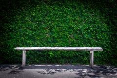 W parku osamotniona drewniana ławka Fotografia Stock
