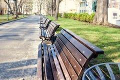 W parku piękna aleja Fotografia Stock