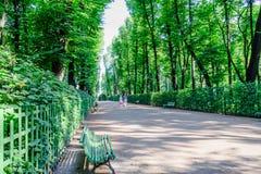 W parku w lecie Fotografia Stock