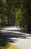 w Pensylwanii gettysurg road jazdy Zdjęcia Royalty Free