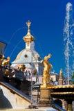 W petergof uroczysta Kaskadowa fontanna, Rosja Zdjęcia Royalty Free