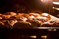 W piekarnika piec kulebiaki Zdjęcie Stock