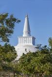 W pielgrzymki miejscu stary królewski miasto Anuradhapura na tropikalnej wyspie Sri Lanka Zdjęcie Stock