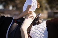 W połowie sekcja dziewczyny obsiadanie na koniu zdjęcie stock