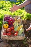 W połowie sekcja mężczyzna z koszem świezi warzywa Fotografia Royalty Free