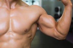 W połowie sekcja napina mięśnie mięśniowy mężczyzna zdjęcie stock