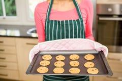 W połowie sekcja pokazuje ciastka na wypiekowej cynie kobieta Fotografia Stock