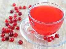 W przejrzystej filiżance cranberry świeży sok Zdjęcia Stock