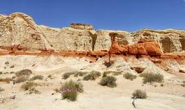 W pustyni rockowa formacja Obrazy Stock