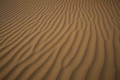 W pustyni Wydmowa piasek Tekstura Obrazy Stock