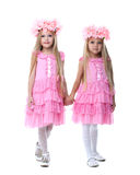 W różowych sukniach dwa pięknej małej dziewczynki Zdjęcie Royalty Free