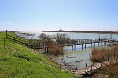 W regionie Delta Del Po, naturalny raj Włochy Zdjęcia Stock
