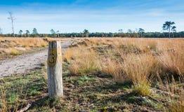 W rezerwat przyrody wietrzejący drewniany słup obraz stock