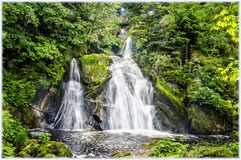 Wśrodku Schwarzwald Czarnego lasu fotografia royalty free