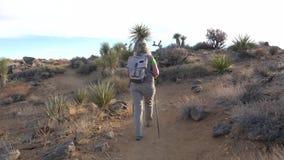 W ruchu kobieta turysta Iść Na śladzie W Mojave pustyni, Tylny widok zbiory