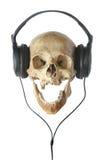 W słuchawkach ludzka czaszka. fotografia stock