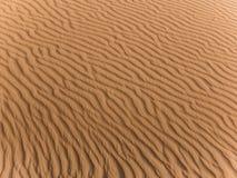 W Sahara Morocco Obrazy Royalty Free
