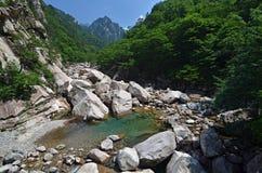 W Seoraksan lasowa rzeka, Korea Fotografia Royalty Free